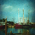 Shrimp Boats Is A Comin by Lianne Schneider