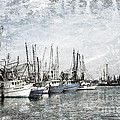 Shrimp Boats Sketch Photo by Joan McCool