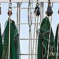 Shrimp Nets by Scott Pellegrin