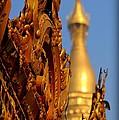 Shwe Dagon Pagoda by Joshua Van Lare