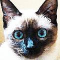 Siamese Cat Art - Black And Tan by Sharon Cummings