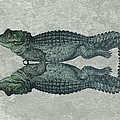 Siamese Twins Blue And Green Crocodiles On Sage Green Stone by Elaine Plesser