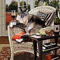 Funny Pet A Wine Bibbing Kitty  by Regina Femrite