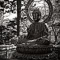 Siddhartha Gautama Buddha by Daniel Hagerman