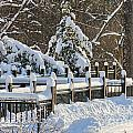 Side Cut Park Winter Wonderland by Jack Schultz