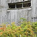 Side Of Barn In Fall by Keith Webber Jr