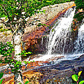 Side View Of Southeast Brook Falls In Gros Morne Np-nl by Ruth Hager