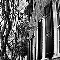 Sidewalk Scene-charleston by Andrew Crispi