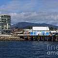 Sidney Harbour On Vancouver Island by Louise Heusinkveld