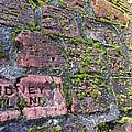 Sidney Island Brick  by Shelley Lewis