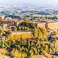 Siena Countryside by Liz Leyden
