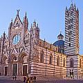 Siena Duomo At Sunset by Liz Leyden