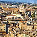 Siena Rooftops by Liz Leyden
