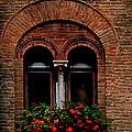 Sienna Window by Patrick J Osborne