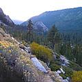 Sierra Nevada Mountain Pass by Frank Wilson