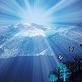 Sierra Radiance by Bobbee Rickard