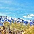 Sierras Peaking by Marilyn Diaz