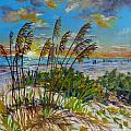 Siesta Beach Sunset Dunes by Lou Ann Bagnall