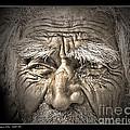 Silent Eyes by Pedro L Gili