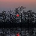 Silent Sun by Joachim G Pinkawa