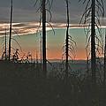 Silhouette @ Yosemite by SC Heffner
