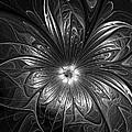 Silver by Amanda Moore
