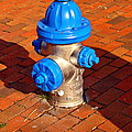 Silver And Blue Hydrant by Rodney Lee Williams