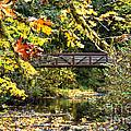 Silver Creek Bridge by Charles Robinson