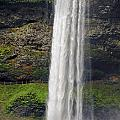 Silver Falls 2 by Tara Fisher