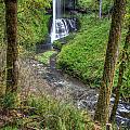 Silver Falls Oregon by Matt Hoffmann