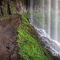 Silver Falls State Park by Matt Hoffmann