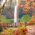 Silver Falls State Park by Tina Marie