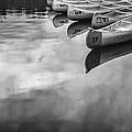 Silver Fish IIi by Jon Glaser
