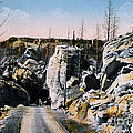 Silver Gate Road Yellowstone Np by NPS Photo Frank J Haynes