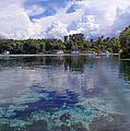 Silver Glen Springs, Florida by Doug McPherson