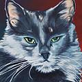 Silver Grey Cat Portrait by Robyn Saunders