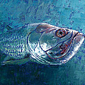Silver King Tarpon by Pam Talley