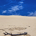 Silver Lake Dune With Dead Tree Branch And Cirrus Clouds by Randall Nyhof