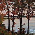 Silver Lake Through Autumn Trees by Heidi E  Nelson