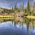 Silver Lake Utah by Wendy Elliott