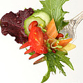 Silver Salad Fork by Iris Richardson