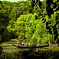 Simpler Times - Central Park - Nyc by Madeline Ellis