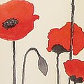 Simply Poppies 2. by Elvira Ingram