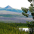Simpson Peak At Swan Lake-yt by Ruth Hager