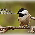 Sing To Him by Sandra Clark