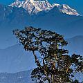 Singalila Ridge Sikkim by Rudra Narayan  Mitra