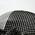 Sensual Singapore by Shaun Higson