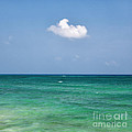 Single Cloud Over The Caribbean by Bryan Mullennix