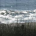 Single Dune Fence by Ellen Meakin