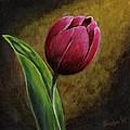 Single Tulip by Jesslyn Fraser
